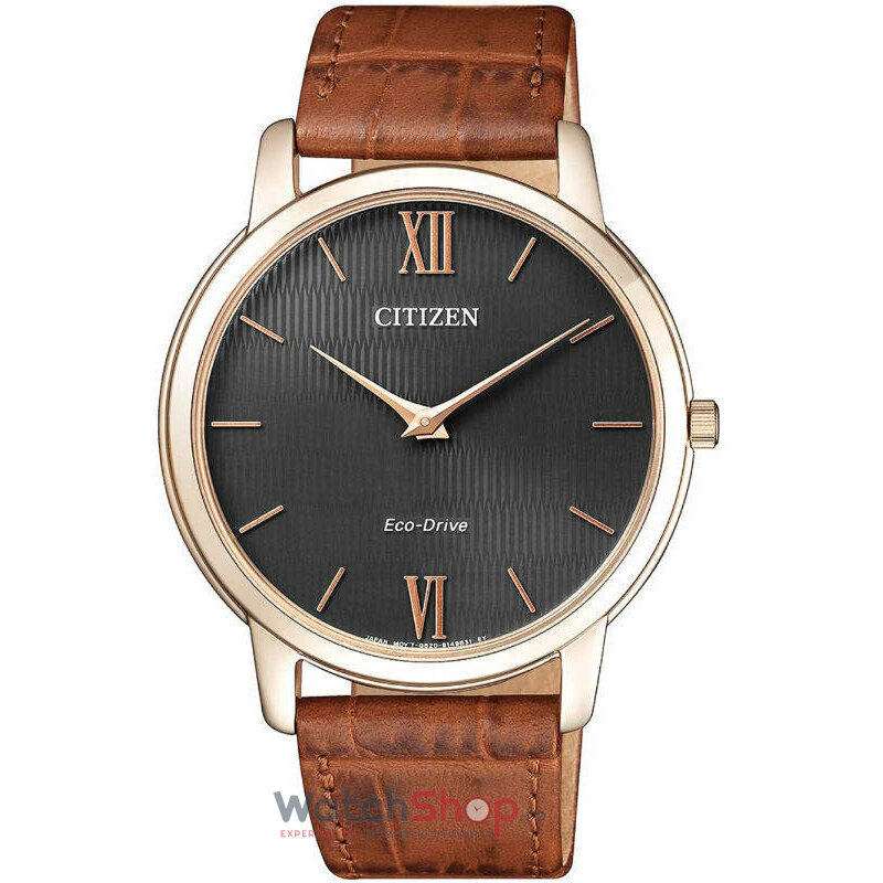 Ceas Citizen STILETTO AR1133-15H Eco-Drive