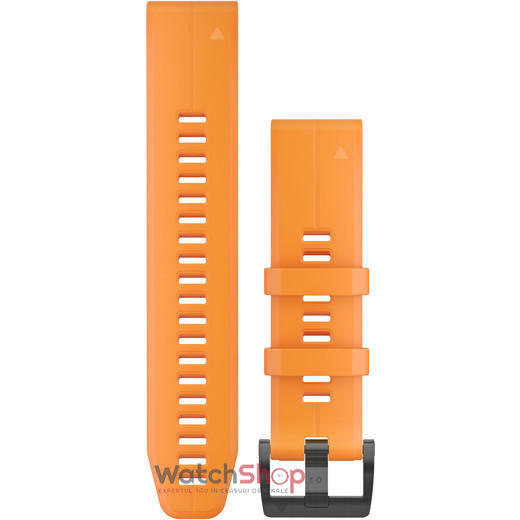 Curea (bratara) ceas Garmin QuickFit® 22 Watch Bands 010-12740-04