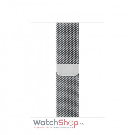 SmartWatch Apple S6 GPS + Cellular,Silver Stainless Steel, 40 mm