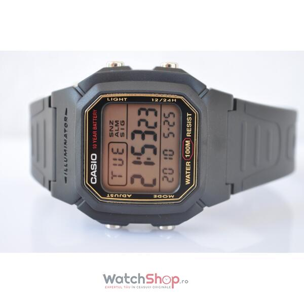 Ceas Casio SPORT W-800HG-9AVES Baterie 10 ani